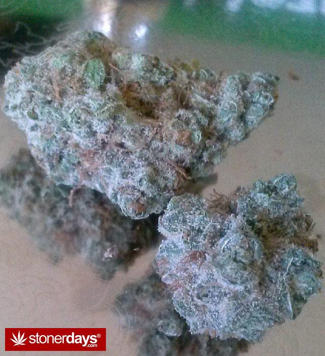 happy-420-stoned-marijuana (132)
