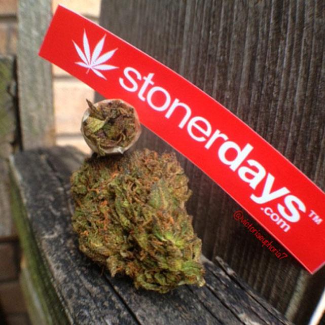 happy-420-stoned-marijuana (379)