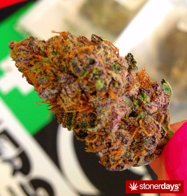 happy-420-stoned-marijuana (393)