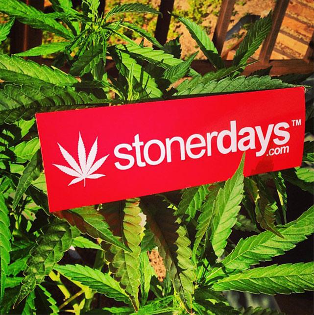 happy-420-stoned-marijuana (83)