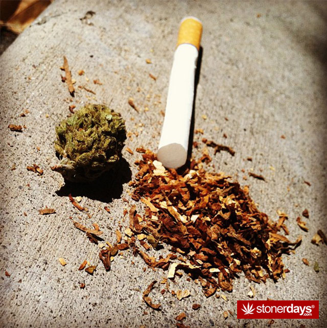 marijuana-ideas-pics-(11)