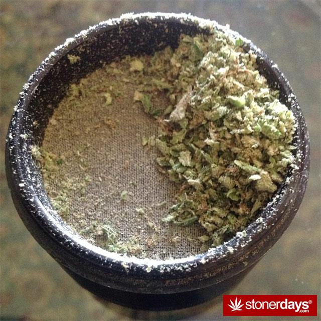 random-marijuana-pics-(11)