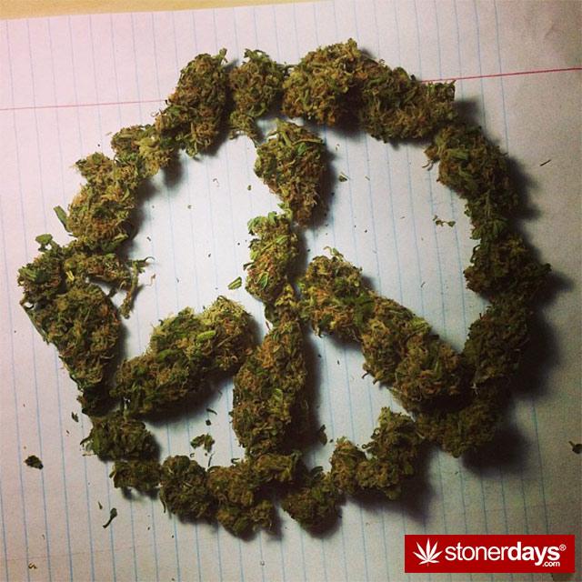 random-marijuana-pics-(31)