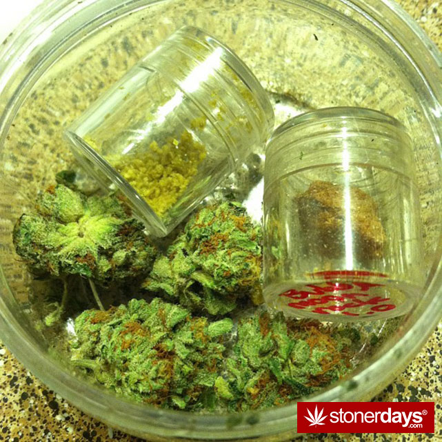 smoke-weed-marijuana-pictures (161)
