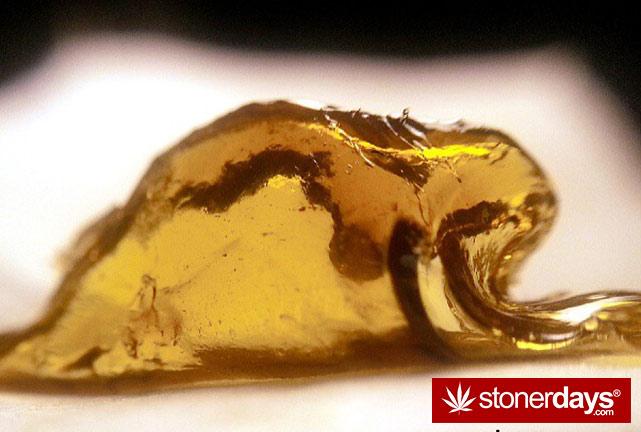 stoner-ganja-pothead-reefer (141)
