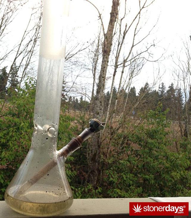 stoner-ganja-pothead-reefer (215)