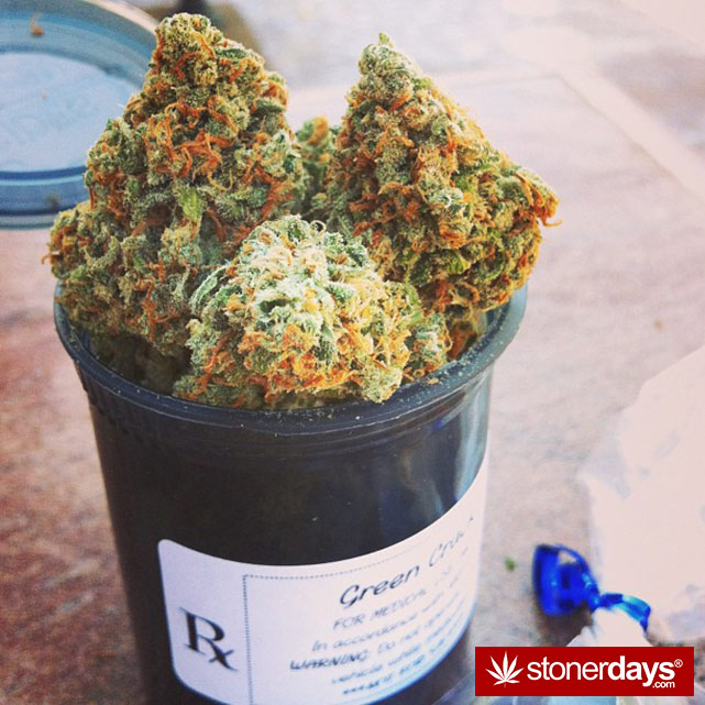 stoner-stoned-blazed-marijuana (158)