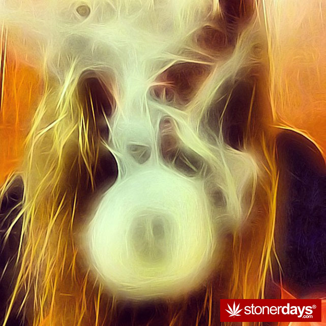 stoner-stoned-blazed-marijuana (33)