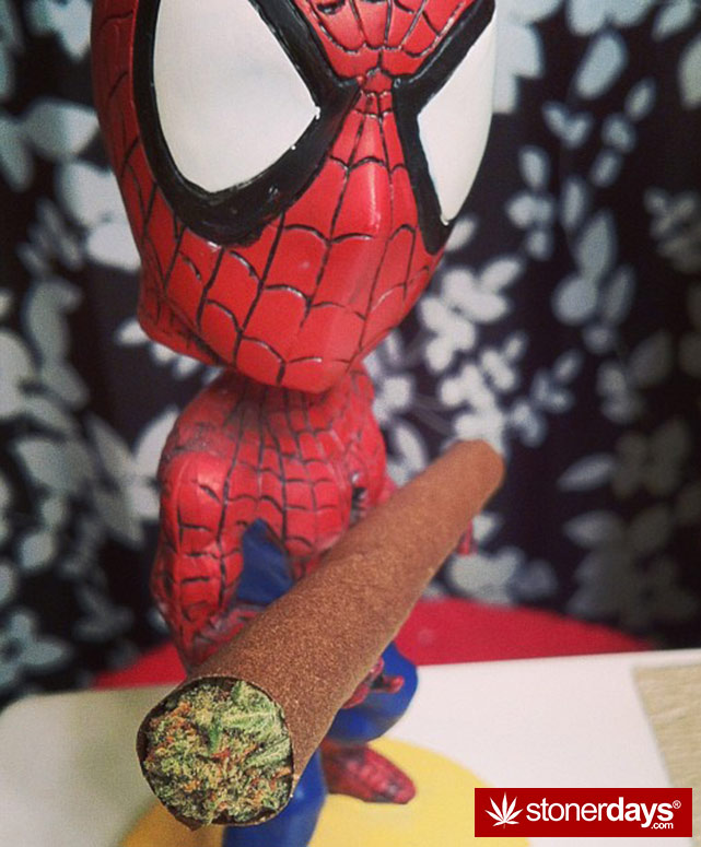 stoner-stoned-blazed-marijuana (35)