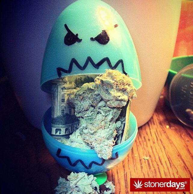 stoner-stoned-blazed-marijuana (48)