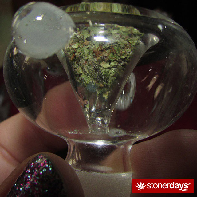 stoner-stoned-blazed-marijuana (57)