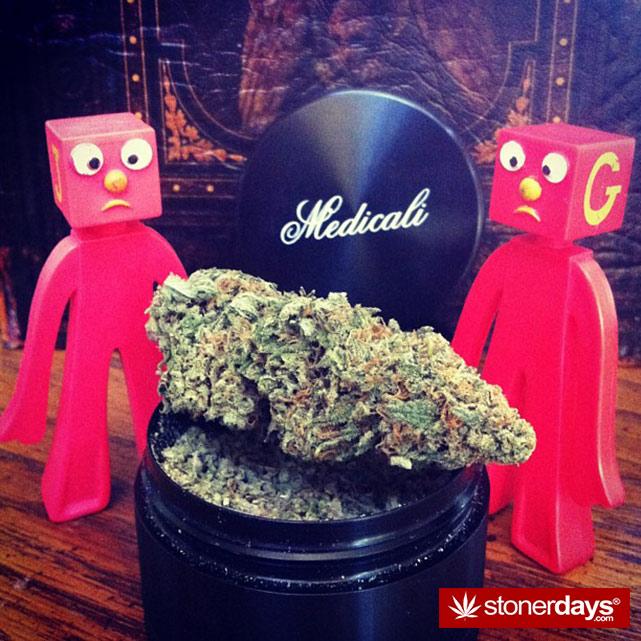 stoner-stoned-blazed-marijuana (84)