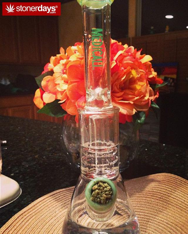 stoner-stoned-blazed-marijuana (89)