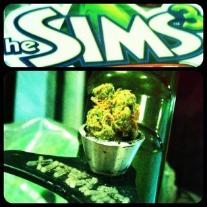 stoner-video-games-sims