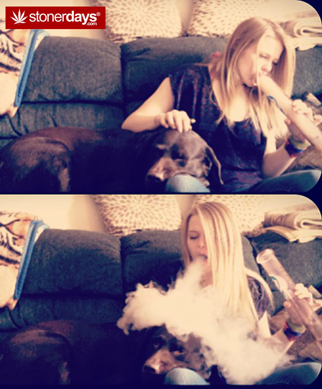 stoner-weed-girls-blazed (27)