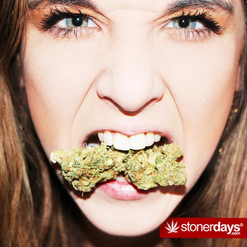 stonerdays-pictures (53)