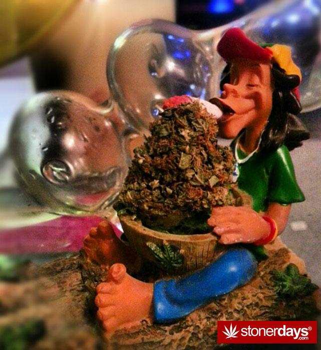 stoners-pics-of-pot-marijuana-pictures (389)