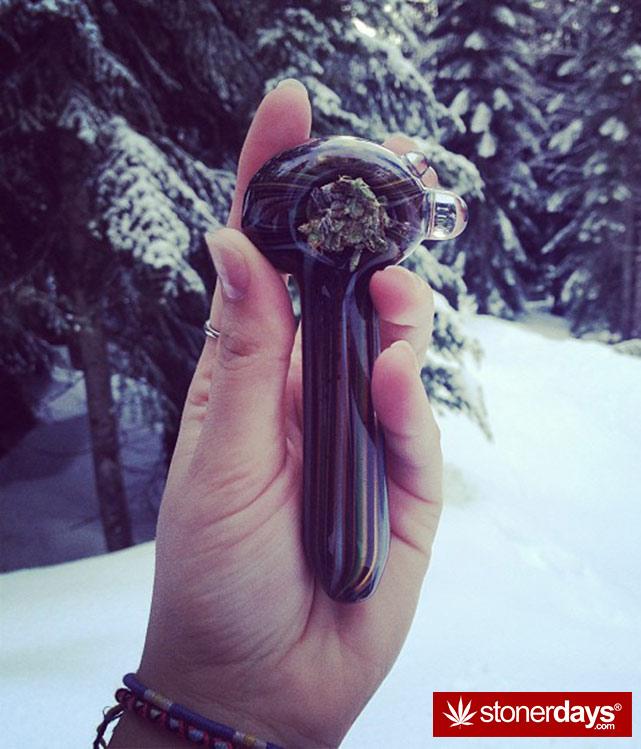 stoners-pics-of-pot-marijuana-pictures (553)