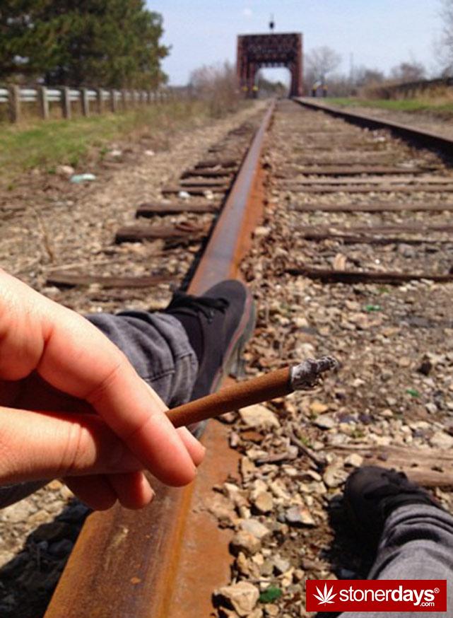 stoners-pics-of-pot-marijuana-pictures (626)