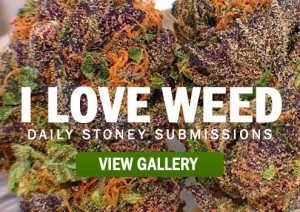 I-LOVE-WEED
