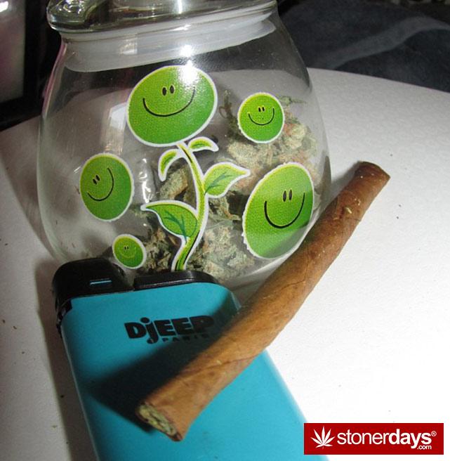 sexy-stoner-marijuana-pictures (312)