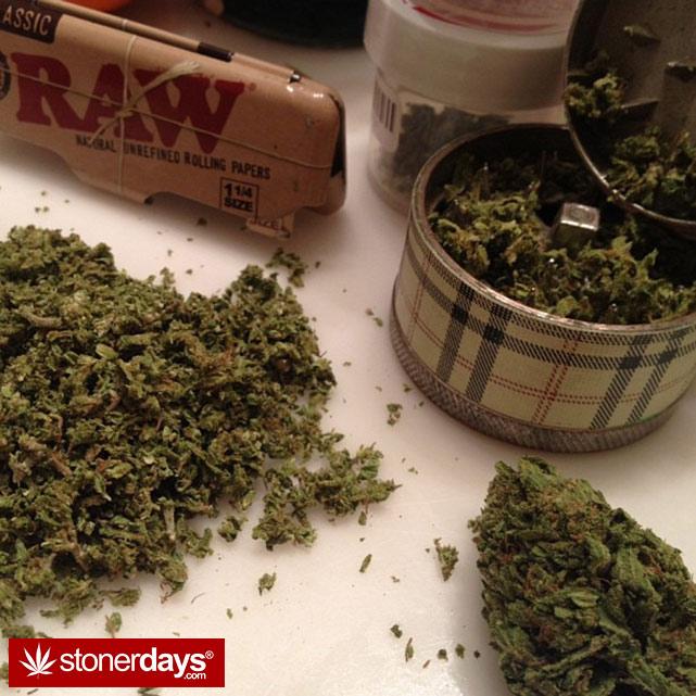 sexy-stoner-marijuana-pictures (420)
