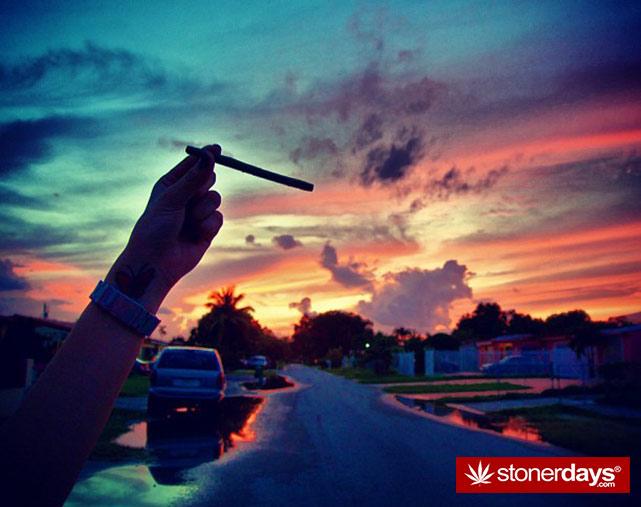 stoners-pics-of-pot-marijuana-pictures (439)