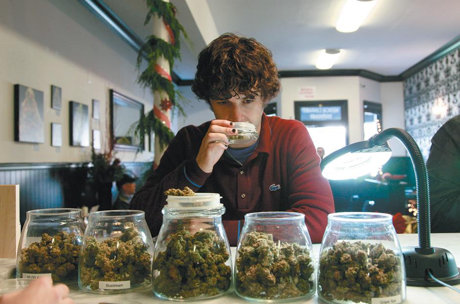 Decriminalizes Cannabis 12