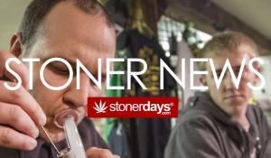 STONERS NEWS