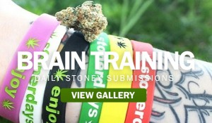 brain-training stonerdays