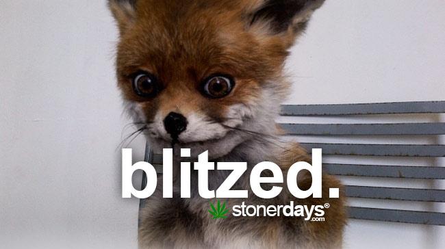 blitzed-marijuana