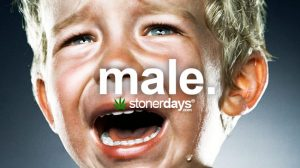 male-marijuana-plant