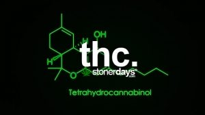 thc-marijuana-term