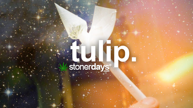 tulip-marijuana-joint