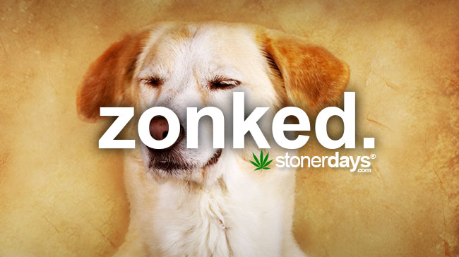 zonked-marijuana-term