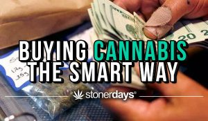 buying-cannabis-the-smart-way-1