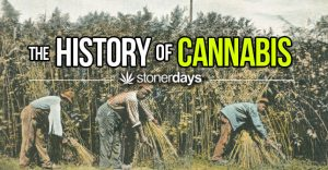 history-of-cannabis-by-stonerdays