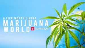 A-Life-Worth-Living-Marijuana-World--