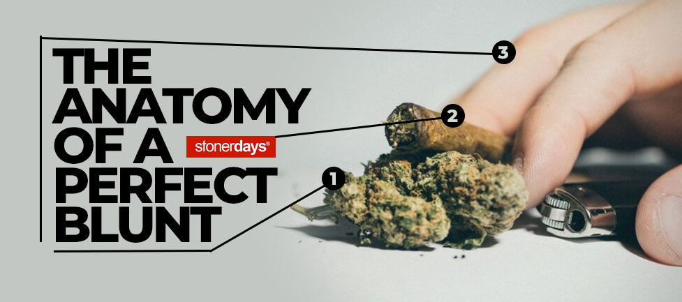 The Anatomy of a Perfect Blunt
